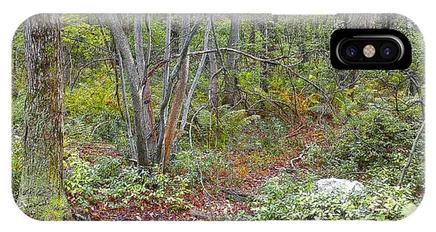 Deer IPhone X Case featuring the digital art Deer Trail Early Autumn Pocono Mountains Pennsylvania by A Gurmankin