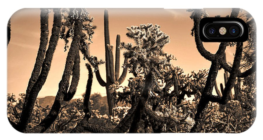 Saguaro Cactus IPhone X Case featuring the photograph Desert At Dusk by Deb Halloran