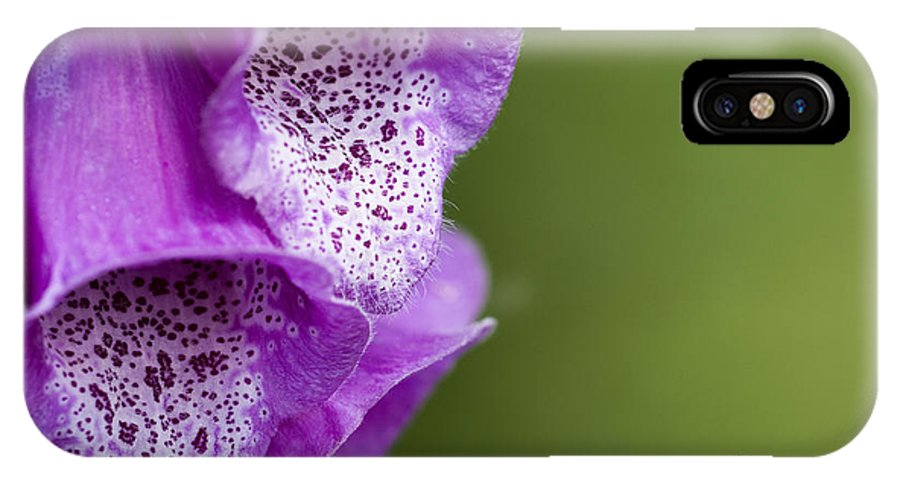 Garden IPhone X Case featuring the photograph Digitalis Abstract by Anne Gilbert