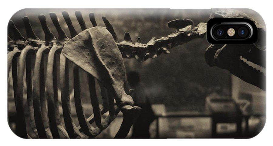Paleontology IPhone X Case featuring the photograph Dinosaur Bones 2 by Joseph Hedaya