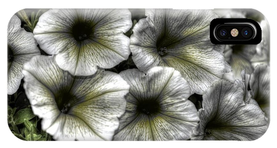 Flowers IPhone X Case featuring the photograph Dirty Flowers 2 by Deborah Ritch