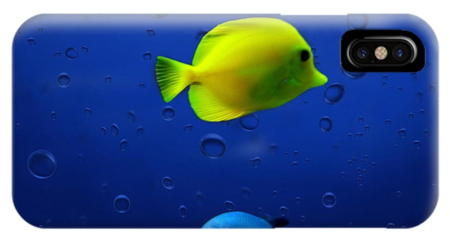 Fish IPhone X Case featuring the photograph Discus Fish by Heike Hultsch