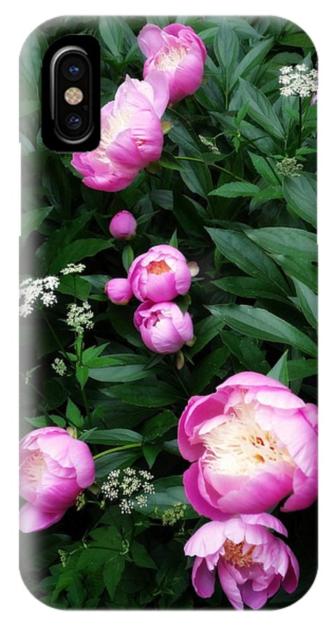 Peonies IPhone X / XS Case featuring the photograph Display Of Romance by Deborah Crew-Johnson