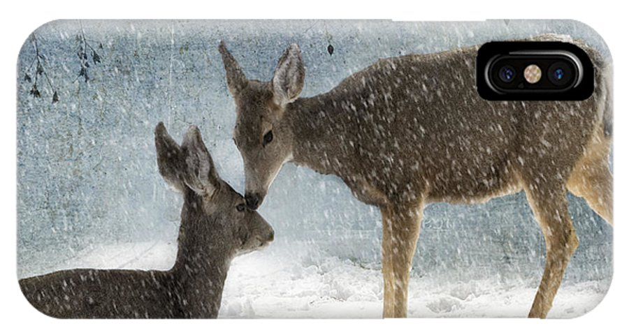 Animal IPhone X Case featuring the photograph Doe A Deer by Juli Scalzi