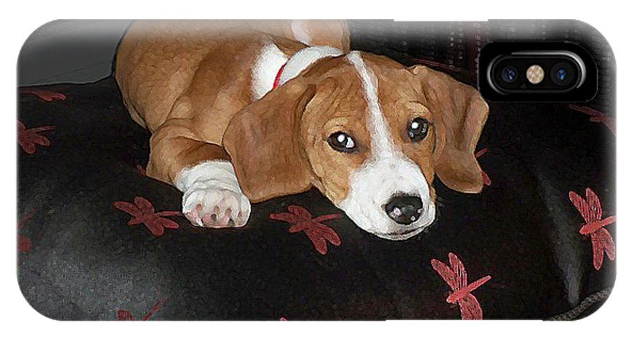 Puppy IPhone X Case featuring the digital art Dog - Mr. Oliver Relaxing by Maureen Tillman