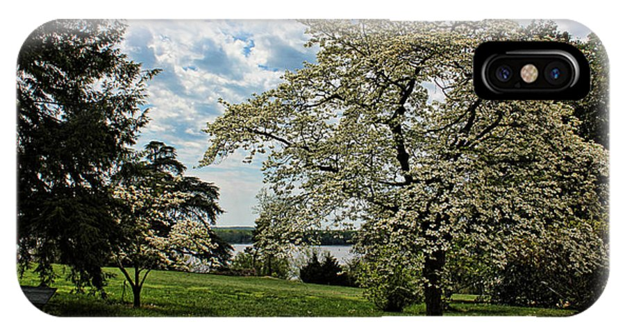Dogwood IPhone X Case featuring the photograph Dogwoods In Summer by Judy Vincent