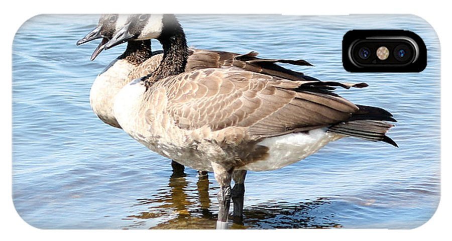 Goose IPhone X Case featuring the photograph Doubles by Lori Tordsen