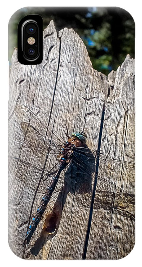 Dragonfly IPhone X Case featuring the photograph Dragonfly by Christian Ross