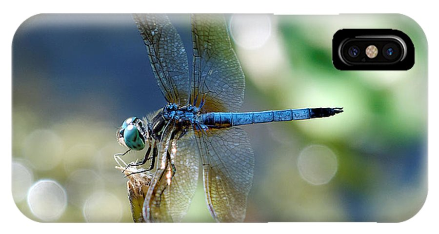 Bug IPhone X Case featuring the photograph Dragonfly Elegance by Charles Feagans