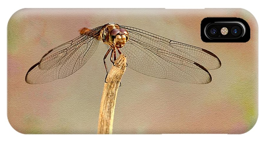 Dragonfly IPhone X Case featuring the photograph Dragonfly In Fantasy Land by Sabrina L Ryan