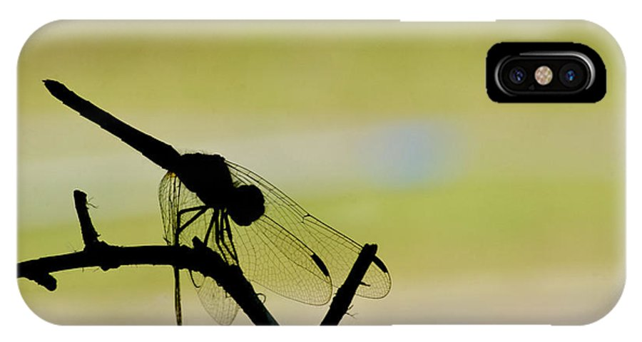 Dragonfly IPhone X Case featuring the photograph Dragonfly Silhouette by Julie Wynn