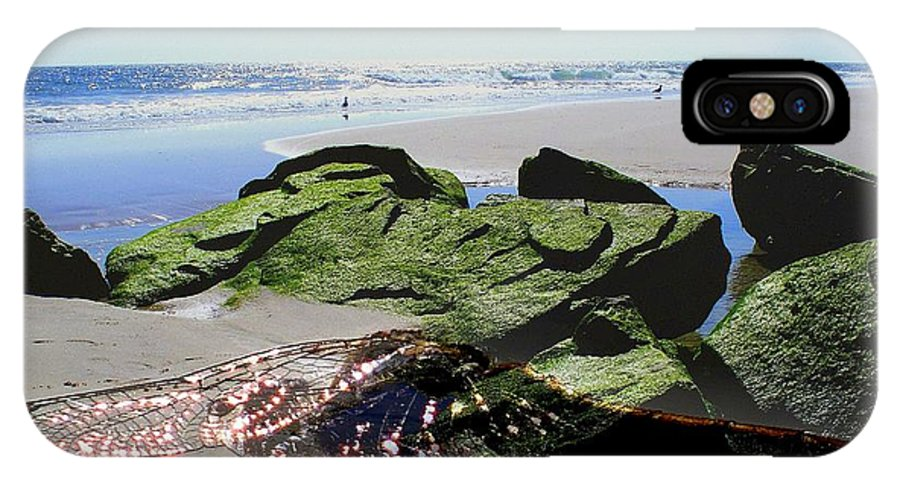 Dragonfly Artwork IPhone X Case featuring the photograph Dragonfly's Day At The Beach by Rick Todaro