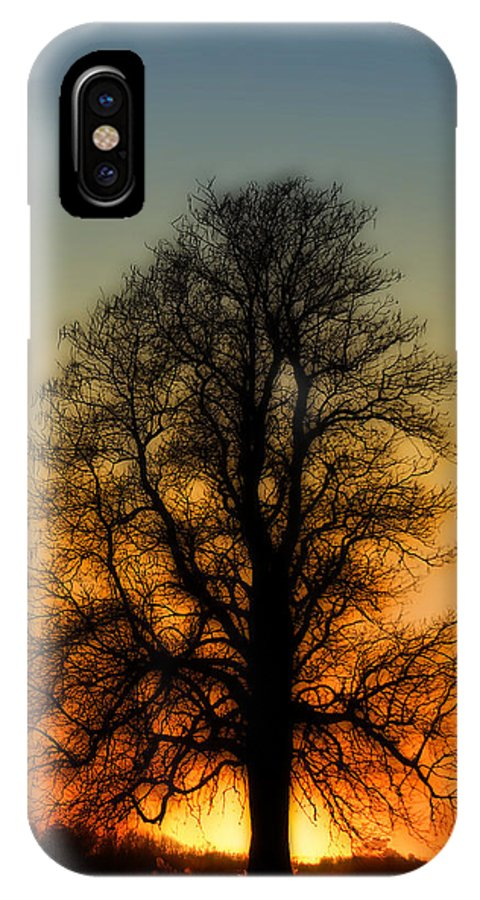 Blue IPhone X Case featuring the photograph Dream Tree At Sunset by Nancy Myer