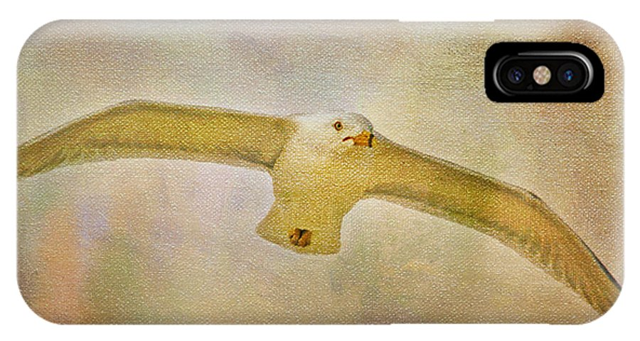 Seagull IPhone X Case featuring the photograph Dream World Seagull by Deborah Benoit
