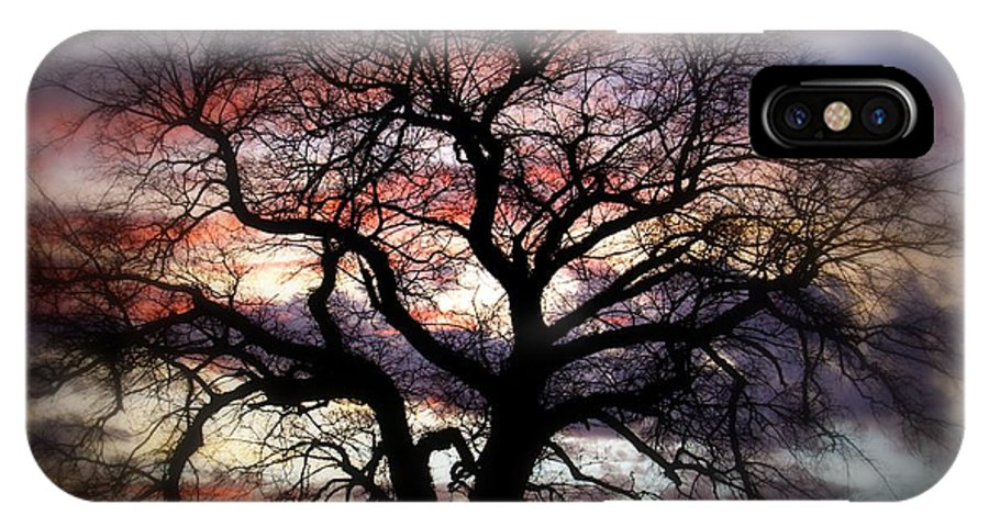 Tree IPhone X Case featuring the photograph Dreaming Tree by Leah VanHoose
