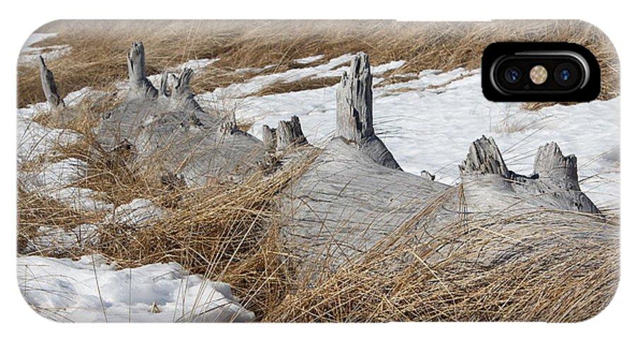 Driftwood IPhone X Case featuring the photograph Driftwood by Zanda K Gutek