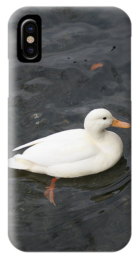 Duck IPhone X Case featuring the photograph Duck Getting Feet Wet by Tim Senior