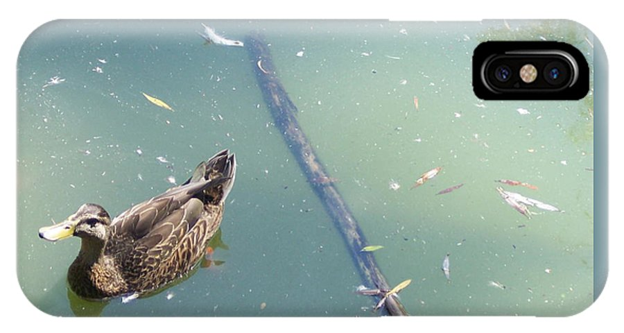 Duck IPhone Case featuring the photograph Duck In Pond by Michelle Miron-Rebbe