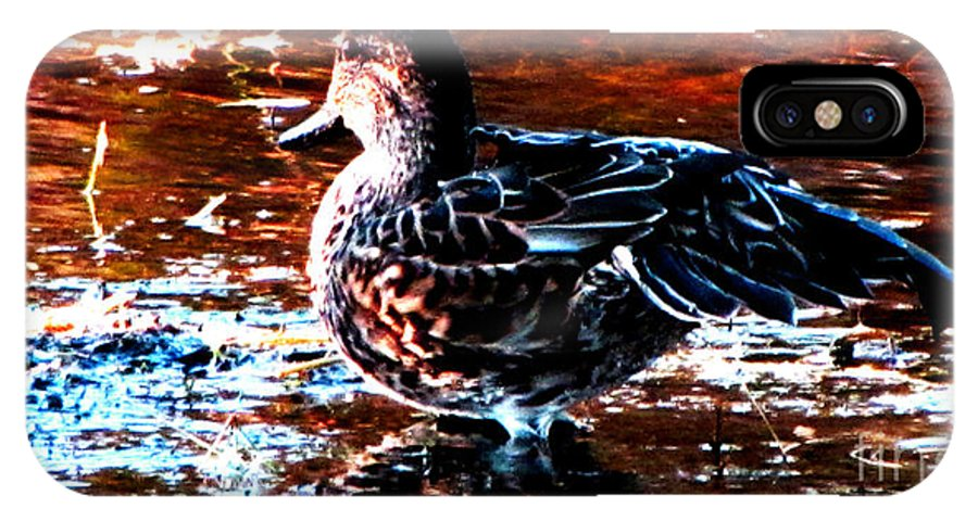 Ron Tackett IPhone X Case featuring the photograph Duck by Ron Tackett