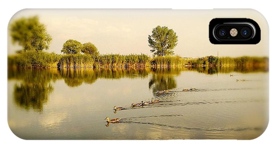 Lake IPhone X Case featuring the photograph Ducks Family by Rumiana Nikolova