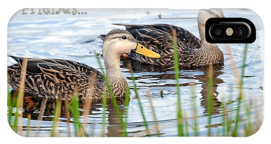 Card IPhone X Case featuring the photograph Ducks by Mark Baker