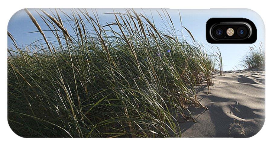 Dune Michigan Michigan Grasses Sun Silver Lake Sand Dunes IPhone X Case featuring the photograph Dune Grass by Tara Lynn