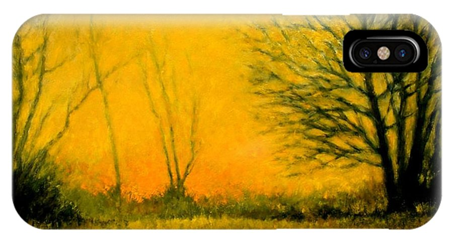 Landscape IPhone X Case featuring the painting Dusk At The Refuge by Jim Gola