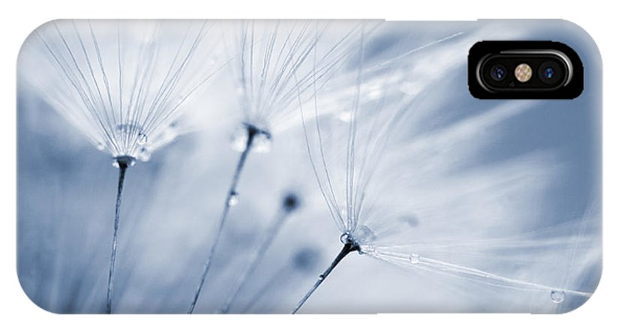 Dusty Blue Dandelion Clock And Water Droplets Iphone X Case
