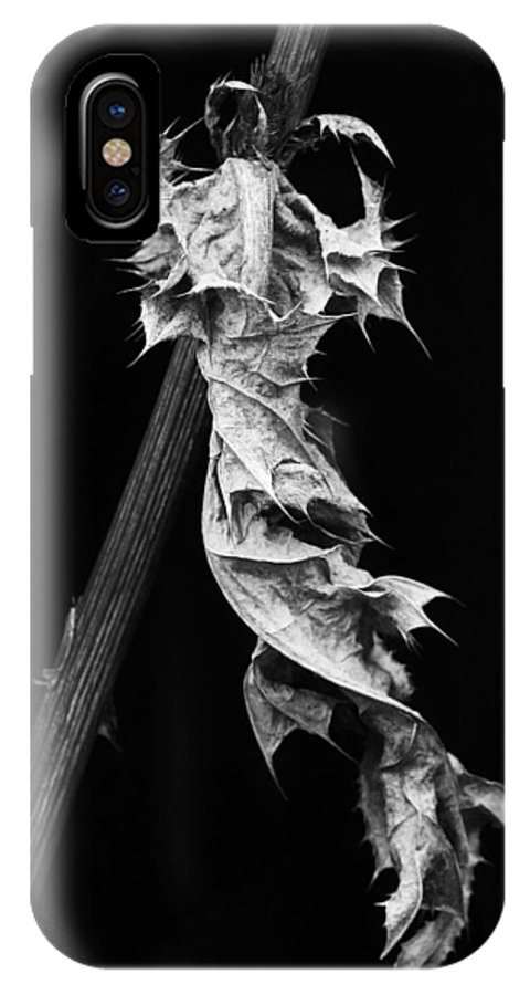 Leaf IPhone X Case featuring the photograph Dying Leaf by Robert Woodward