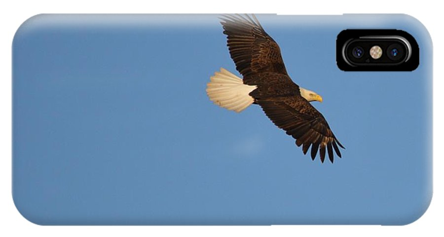 Eagle IPhone X Case featuring the photograph Eagle Flight 2 by Bonfire Photography