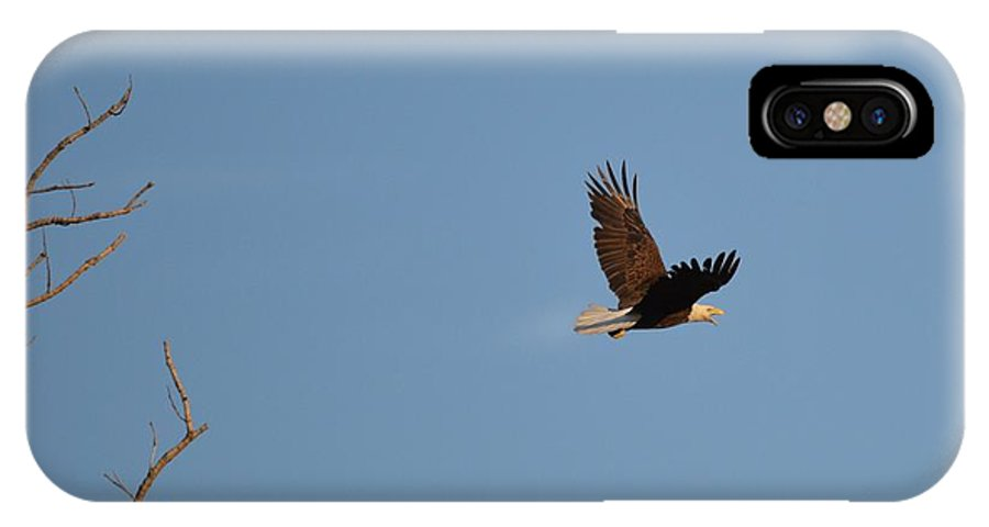 Eagle IPhone X / XS Case featuring the photograph Eagle Flight by Bonfire Photography