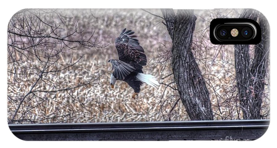 Eagle IPhone X Case featuring the photograph Eagle Landing 2 by M Dale