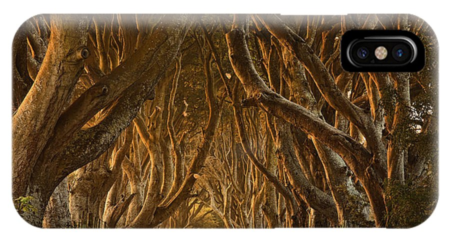 Dark IPhone X Case featuring the photograph Early Morning Dark Hedges by Derek Smyth