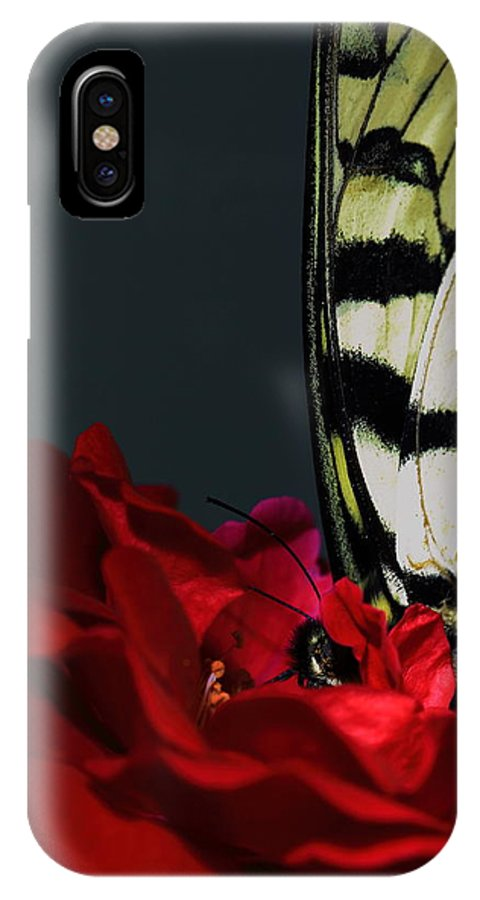 Butterfly IPhone X Case featuring the photograph Eastern Tiger Swallowtail by Cody Arnold