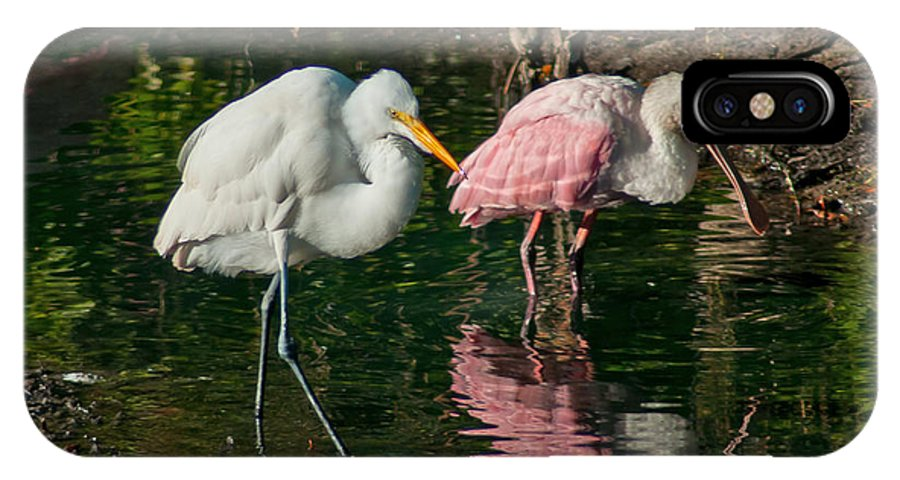 Spoonbill IPhone X Case featuring the photograph Egret And Pink Spoonbill by Stephen Whalen