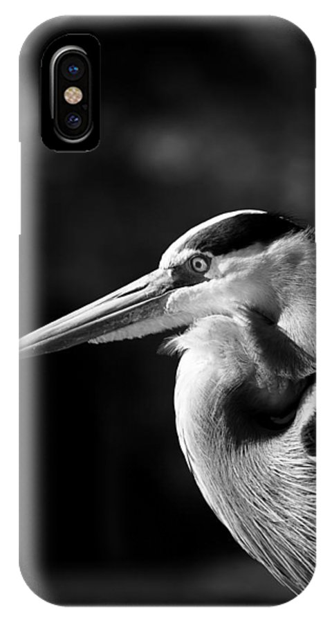 Pensacola Bay IPhone X Case featuring the photograph Egret by Don Cockroft