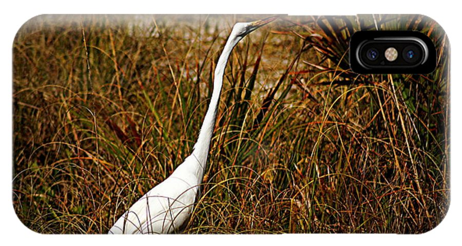 Egret IPhone X Case featuring the photograph Egret by Paul Wilford
