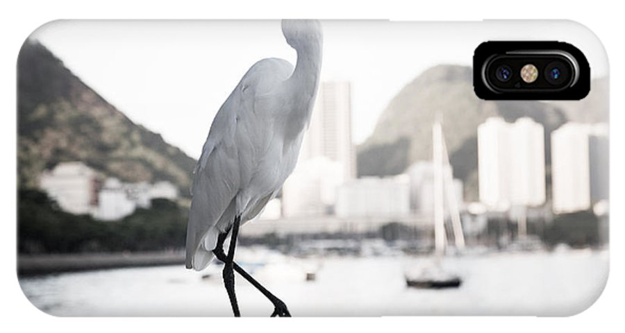 Brazil IPhone X Case featuring the photograph Egret Strut by Bob Rapfogel
