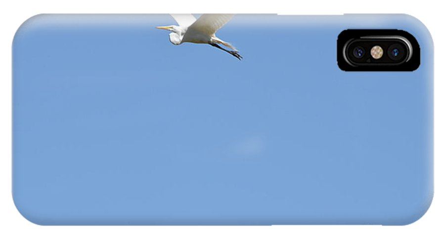 Egret IPhone X Case featuring the photograph Egret Takes Flight by Kathy Vilim