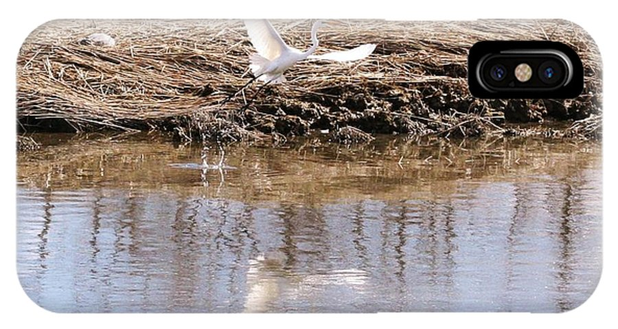 Snowy IPhone X Case featuring the photograph Egret Taking Off by Karen Silvestri