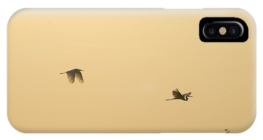 Egret IPhone X Case featuring the photograph Egrets In Flight by Charles Beeler
