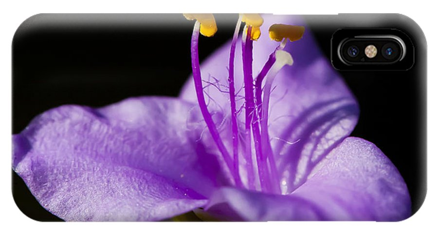Purple Flower IPhone X Case featuring the photograph Electric Stamen by Dan Hefle