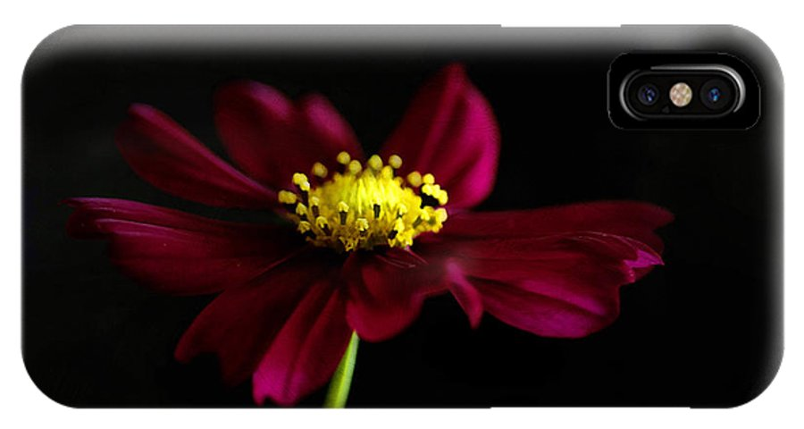 Painterly IPhone X Case featuring the photograph Elegance Of A Cosmo by Darren Fisher