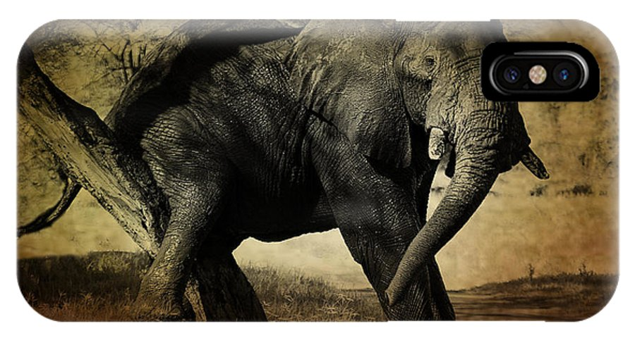 Elephant IPhone X Case featuring the photograph Elephant by Christine Sponchia