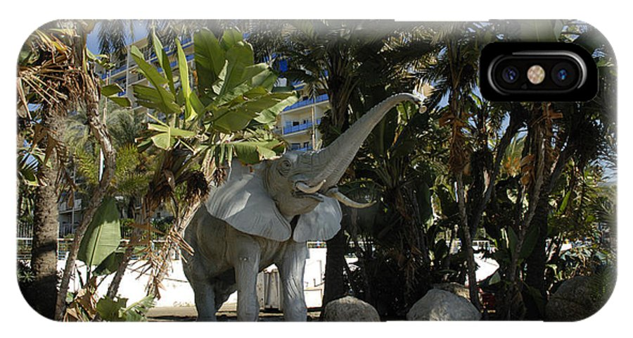 Sunset IPhone X Case featuring the photograph Elephant Show In Marbella by Brenda Kean