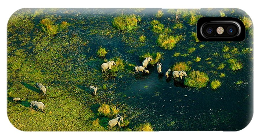 Elephants IPhone X Case featuring the photograph Elephants From Above by Marc Levine