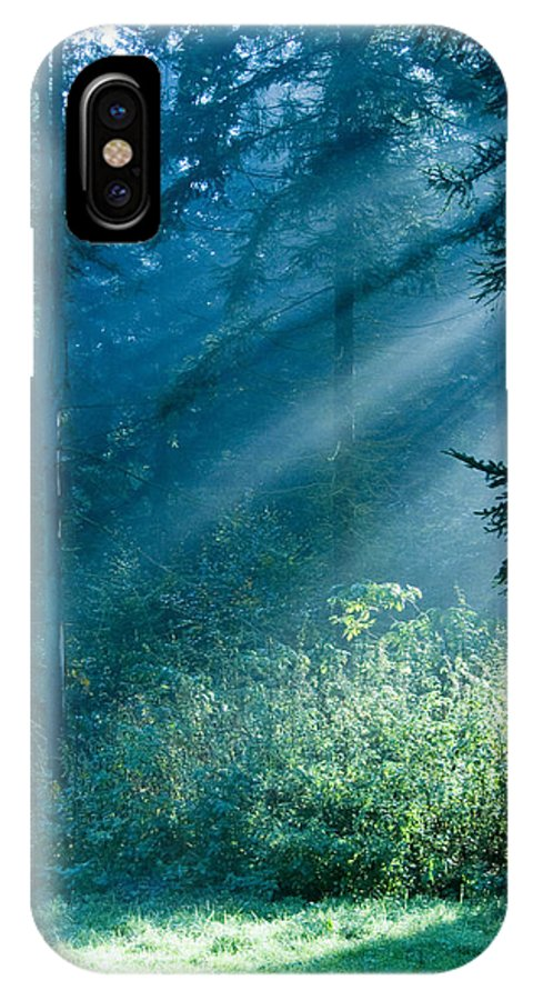 Nature IPhone Case featuring the photograph Elven Forest by Daniel Csoka