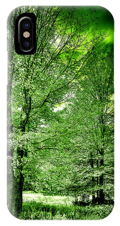 Landscapes IPhone X Case featuring the photograph Emerald Clearing by David Patterson