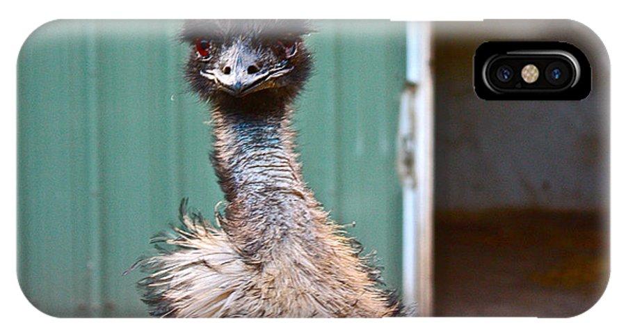 Emu IPhone X Case featuring the photograph Emu by Carol Tsiatsios