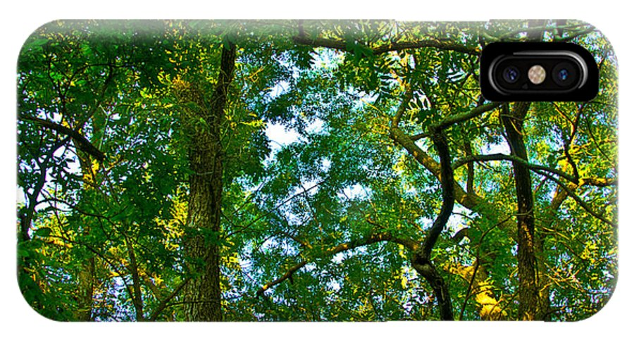 Tree Photographs IPhone X Case featuring the photograph Enchanted Forest by Vernis Maxwell